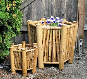 Hexagon Bamboo Planter