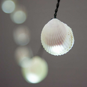 Seashell String Lights - 9.5ft